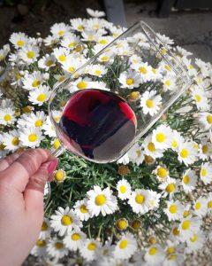 Barbera d'Asti Trej Amis, il vino rosso da compagnia!